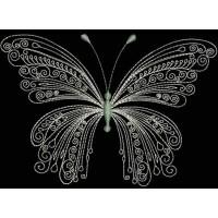 Бабочка Кружевные линии