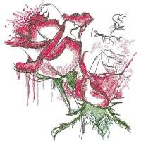 Розы красные с белым