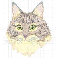 Кот зеленоглазый