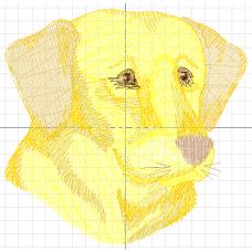 Желтый пёс