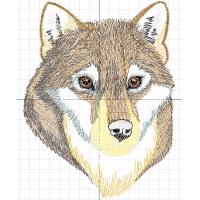 Волк коричневый