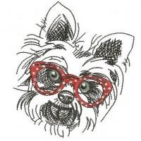 Терьер в очках