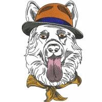 Овчарка в шляпе