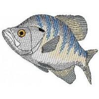 Дизайн машинной вышивки Рыбка скачать