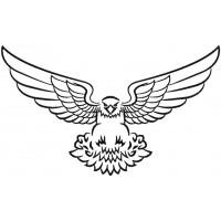 Дизайн машинной вышивки Орёл летит скачать