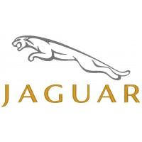 Дизайн машинной вышивки Jaguar скачать